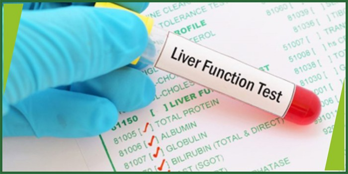 LFT (Liver Function Test)